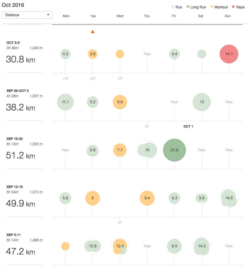 Strava training log for the month leading up to the race